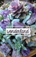 wonderland | nct dream af by kpopapplyfics