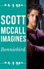 Scott McCall Imagines by bonniebird