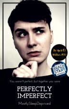 Perfectly Imperfect - Danisnotonfire X Reader by MostlySleepDeprived