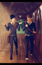 Life Changer: a Phanfictin Harry Potter AU by INeedToNotWithMyself