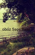 obóz muzyczny/5sos,BaM by WikiGsmes
