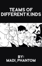 Teams of Different Kinds  (A Danny Phantom/Young Justice Crossover)  by Madi_Phantom