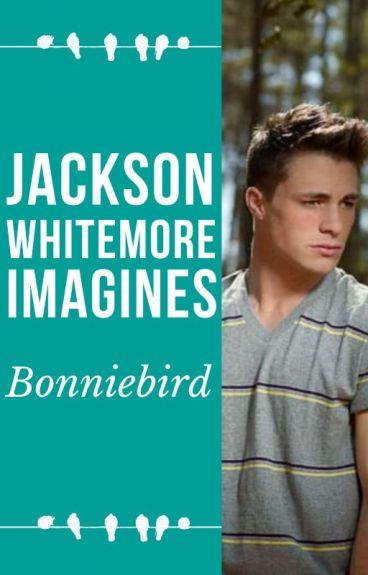Jackson Whittemore Imagines