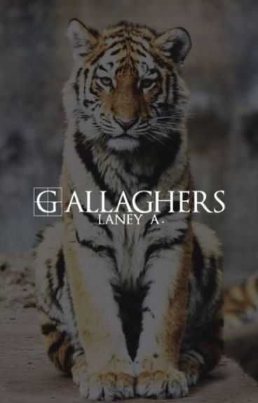 GALLAGHERS ▷ GIF SERIES (O.H)