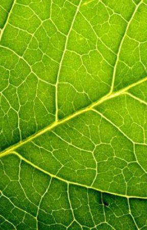 Leafy x Onision by Mokochi_