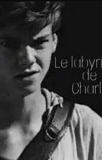 Le labyrinthe de Charlie by PenaRebelde
