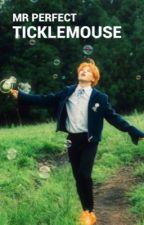 [BTS FF] Mr Perfect | p.jm | HIATUS  by XTickleMouseX