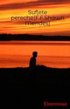 Suflete pereche(F.F.Shawn Mendes) by DieElena