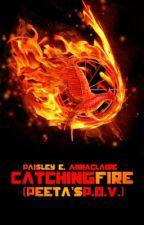 Catching Fire (Peeta's P.O.V.) by roaring_lungs