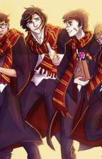 Percy Jackson in Hogwarts by ThercyJackson