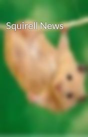 Squirell News by Squirell_News