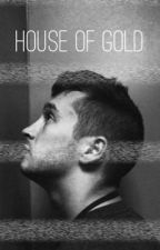 House of Gold // Adopted by Tyler Joseph by tylerschild