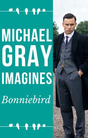 Michael Gray Imagines