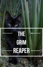 the grim reaper by vminvhh