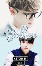 Stalker «Chenber» by delfi_fg