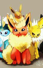 Pokémon: Ash und das Geheimnis der Evoli's by Lessi410