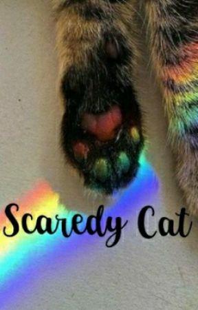 ••ScaredyCat•• ;suga by taehi-
