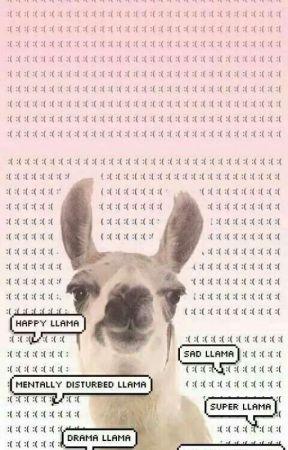 All Things llama by NetflixNChilll