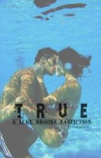 True (Luke Brooks Fanfiction) {COMPLETED} by jernoskians_