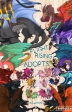 Flight Rising Adoption Center  by kew0909