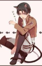 Neko Levi x Reader by _Milly111_