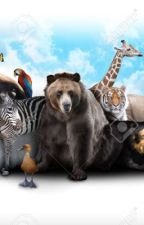 Zoo RP by JayFeatherXLionBlaze