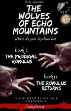 The Wolves of Echo Mountains by Sim-AntinI