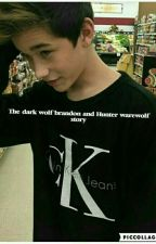 the dark Wolf (brandon Rowland warewolf story)  by BrandonrowlandsHusky