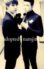 Adopted (Namjin) by armyforlifeuuu
