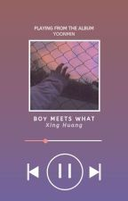 boy meets what • yoonmin by astonixing