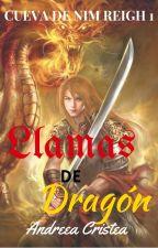 Llamas de Dragón [Cueva de Nim Reigh 1] by PinkyAzalea