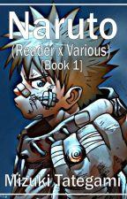 Naruto [Reader X Various] by Mizuki_Tategami