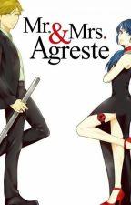 Mr. y Mrs. Agreste by VickySH7