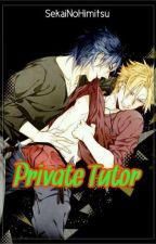 Private Tutor by SekaiNoHimitsu