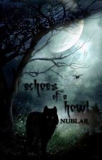 Echoes of a Howl by curiositas