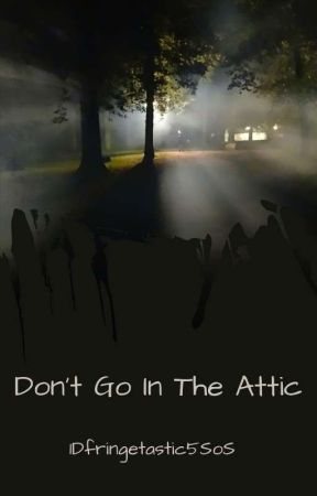 Don't Go In The Attic by 1Dfringetastic5SoS