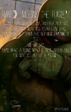 TMNT》Meeting The Turtle's by FairyGodAngel