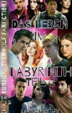 Das Leben im Labyrinth Teil 2 (MazeRunner/TeenWolf Fanfiction) by mazewolfx