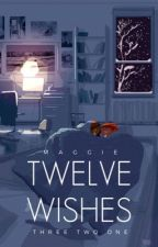 Twelve Wishes by scarcities