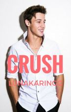 Crush by Lunakaringg