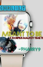 In Love With An Angel (A Scorpius Malfoy Time Travel) by 9Harry9