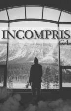 Incompris by Gagou29