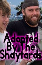 Adopted By The Shaytards by DepressedCarrot
