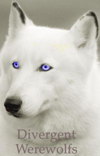 Divergent Werewolfs
