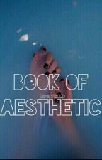 Book Of Aesthetic by GayWord
