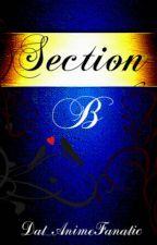 Section B   Original by Dat_AnimeFanatic