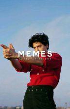 fillie/mileven - memes  by secretly-silent