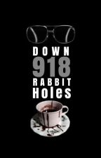 Down 918 Rabbit Holes by Hafferby