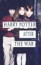 HARRY POTTER AFTER THE WAR by Ruby_Stiles