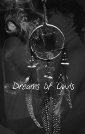 Dreamcatcher by VeilofPetals
